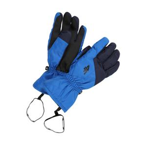 4F Sportovní rukavice  modrá / černá