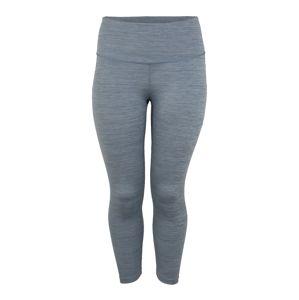 NIKE Sportovní kalhoty  šedá / modrá