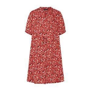 SELECTED FEMME Košilové šaty 'POPPY DAMINA'  rezavě červená