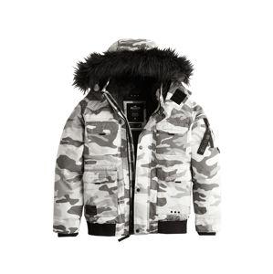 HOLLISTER Zimní bunda 'XM19'  světle šedá / bílá