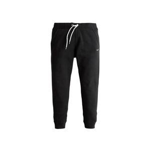 HOLLISTER Jogginghose  černá