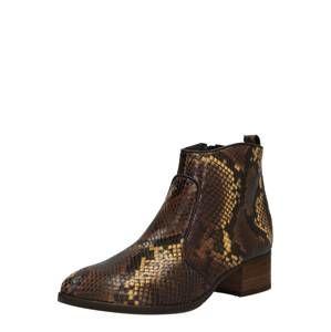Paul Green Kotníkové boty  zlatá / černá