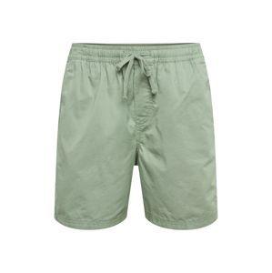 JACK & JONES Kalhoty 'JACK'  zelená
