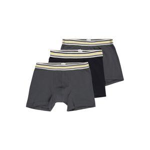 SCHIESSER Spodní prádlo  antracitová / tmavě šedá
