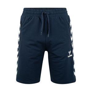 Hummel Sportovní kalhoty 'RAY'  tmavě modrá / bílá
