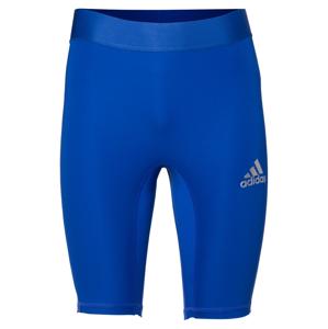 ADIDAS PERFORMANCE Sportovní spodní prádlo  modrá / stříbrná