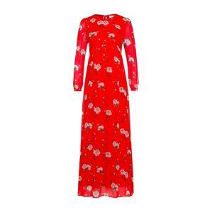 IVY & OAK Šaty  mix barev / červená
