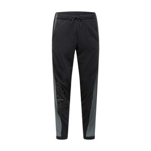 ADIDAS PERFORMANCE Sportovní kalhoty  černá / šedá / tmavě šedá