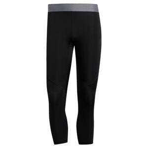 ADIDAS PERFORMANCE Sportovní kalhoty  stříbrně šedá / černá