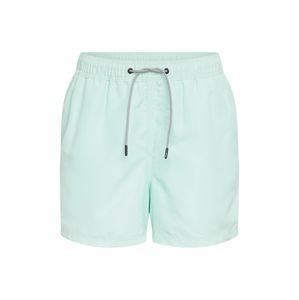 JACK & JONES Plavecké šortky 'JJIARUBA'  světle zelená