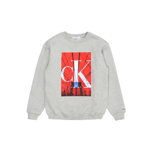 Calvin Klein Jeans Mikina  světle šedá / červená / černá / královská modrá